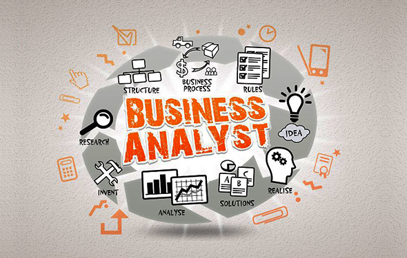 The Roles of a Business Analyst